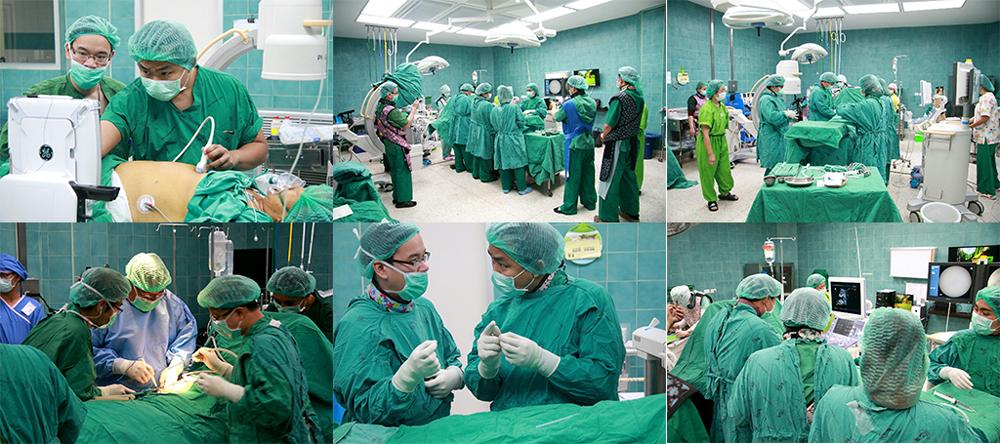 The Cholangiocarcinoma Center of Excellence, Curative Surgery Program, Srinagarind Hospital, KKU.