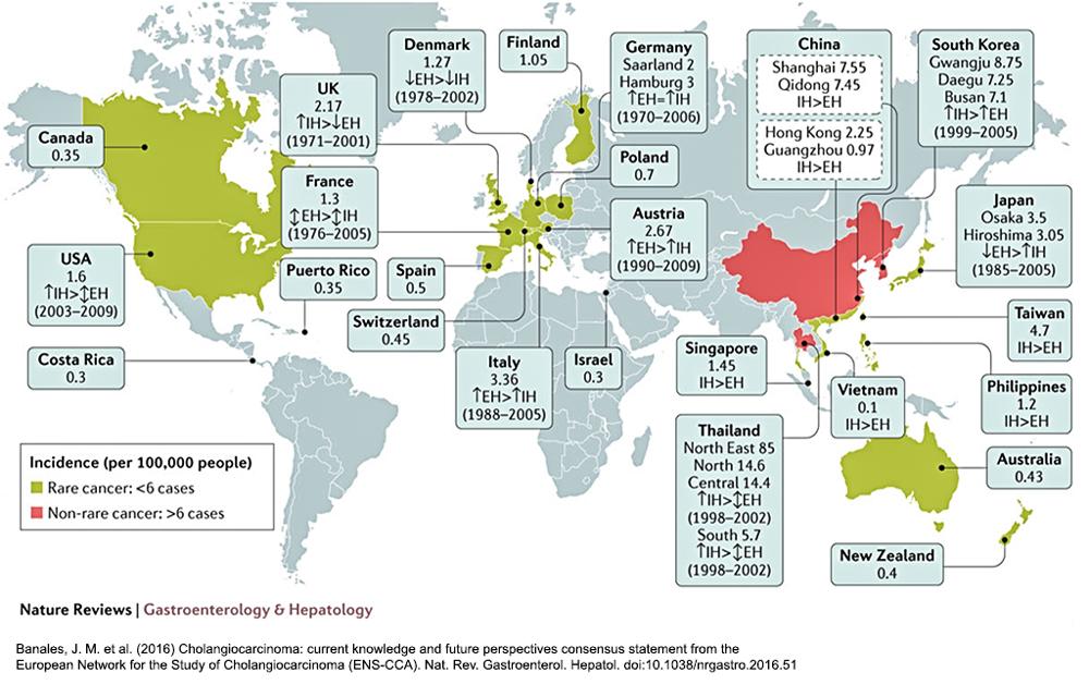 Worldwide Incidence of Cholangiocarcinoma